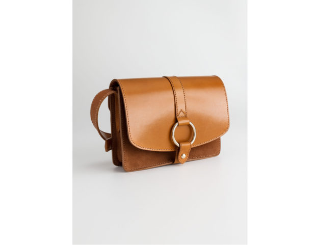 Gold Ring Leather Bag