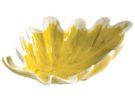 Bolo foglia quercia
